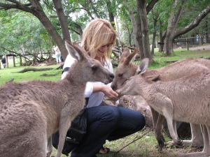 love feeding kangaroos