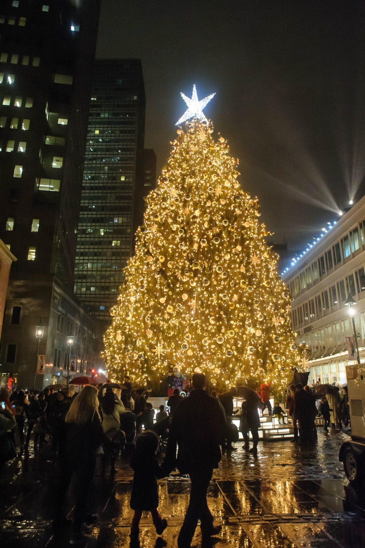 Seaport_TreeLighting_2015_jkratochvil_6540_-1500x2254